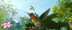 pássaros, libélulas, folhas e flores combinadas em um espetáculo visual