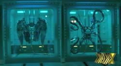 Asas e braços mecânicos dão evidências da vinda do Abutre e Dr. Octopus.